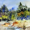 Watercolor Artists Featured in YAA Spotlight Show