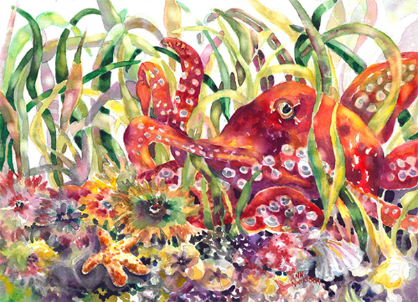 """""""Octopus"""" by Ann Nicholson"""